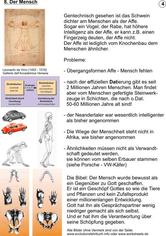 Evolution - Schöpfung - auf 12 Seiten gegenübergestellt - neue ...