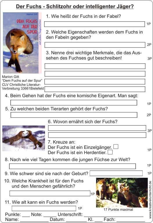 Klassenlektu00fcre Dem Fuchs auf der Spur von Marion Gitt CLV ...