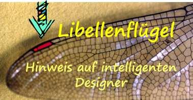Libellenflügel-modernes Design-s