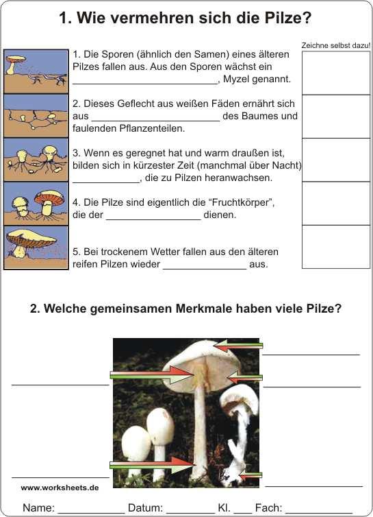 Lernspiele mathematik 4