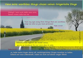 Vane mire-worthless things-choses vaines-trügerische Dinge-s